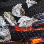 焼き牡蠣の正しい焼き方!牡蠣小屋は熊本のココがおすすめ!